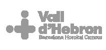 Vall Hebron Logo